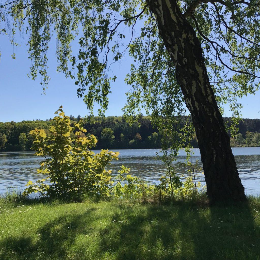 Uferlos: Blick auf den Möhnesee