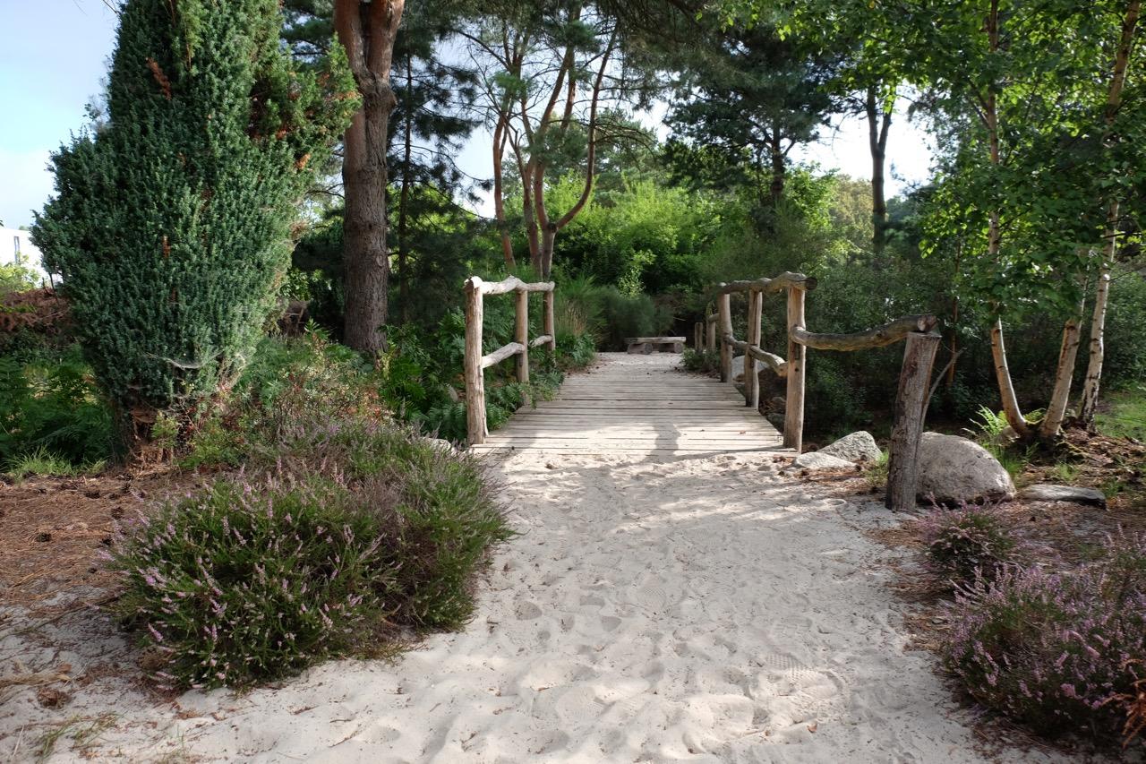 Heidelandschaft: Sandweg über eine hölzerne Brücke