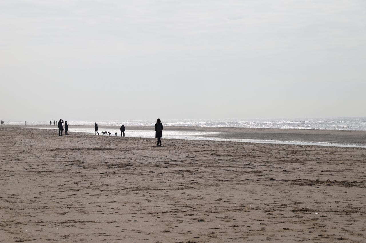 Noordwijk: Strand mit Menschen und Hunden