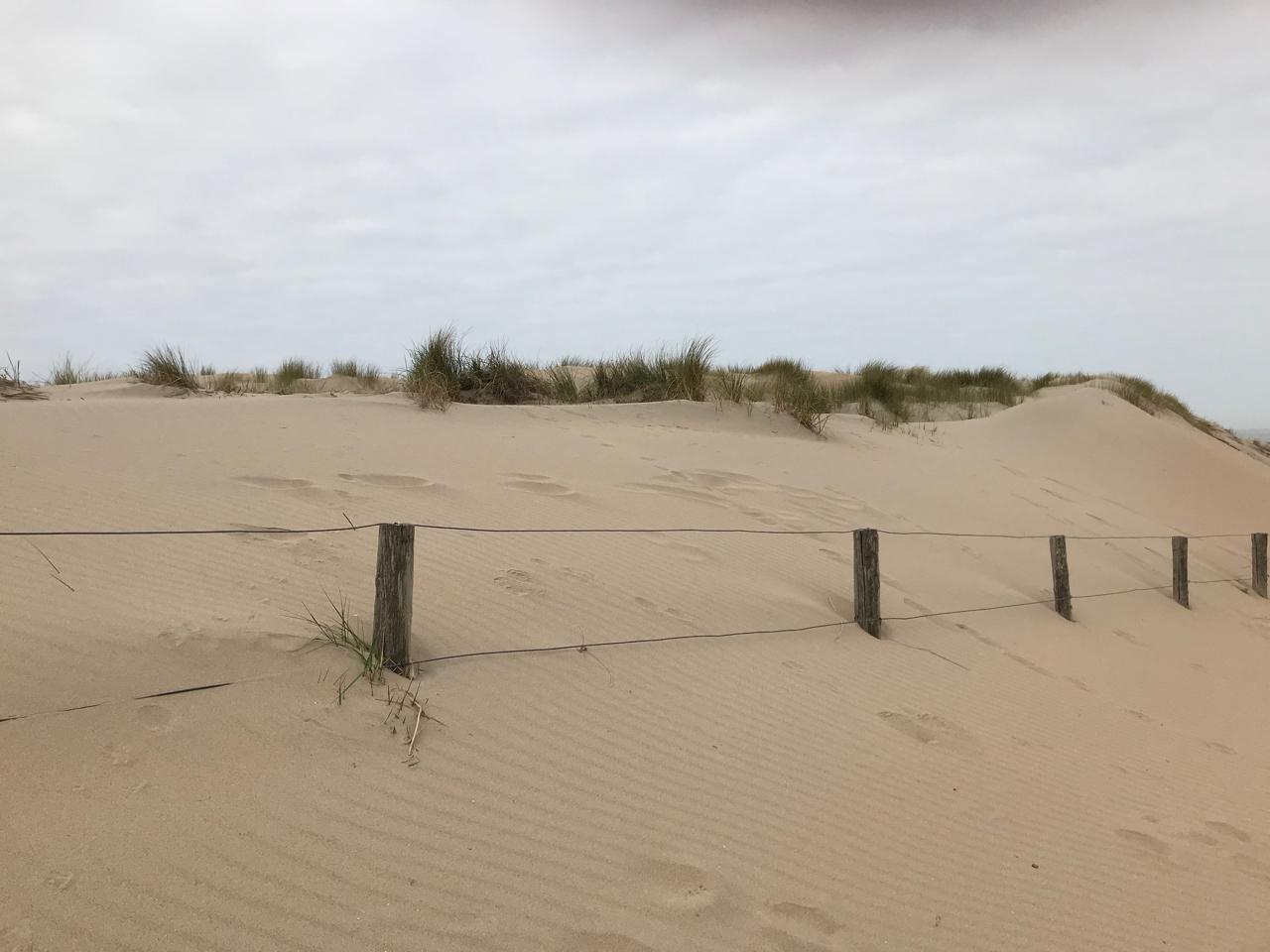 Noordwijk Strand: Düne