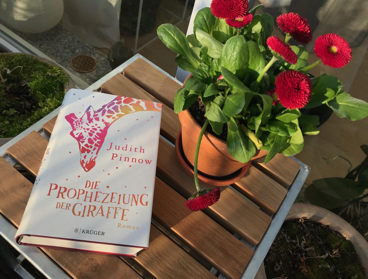 """Buch """"Die Prophezeiung der Giraffe"""" auf dem Terrassentisch neben einer roten Belli-Blume"""