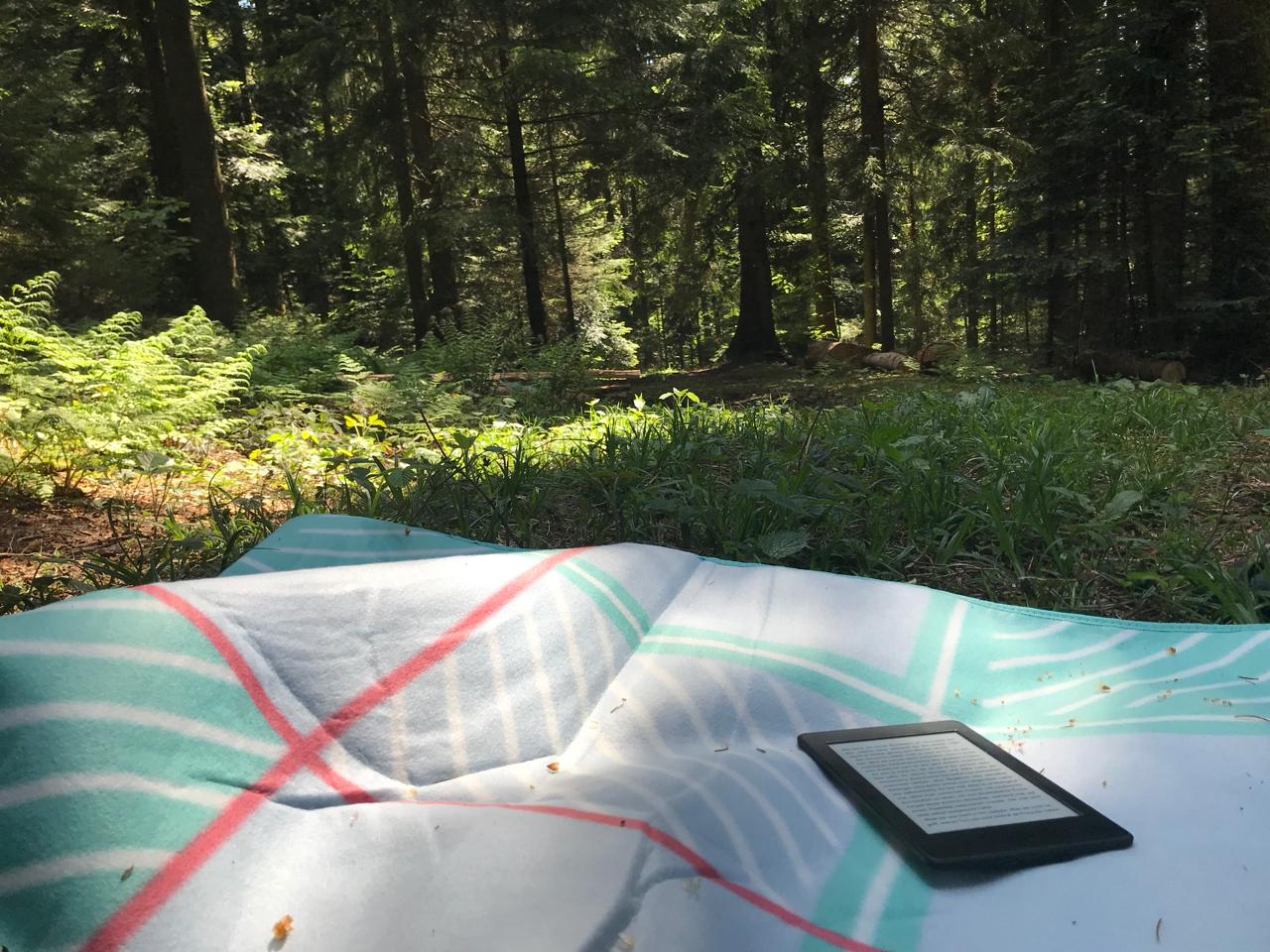 Mit Buch im Wald: Buch auf Picknickdecke mit Blick in den Wald
