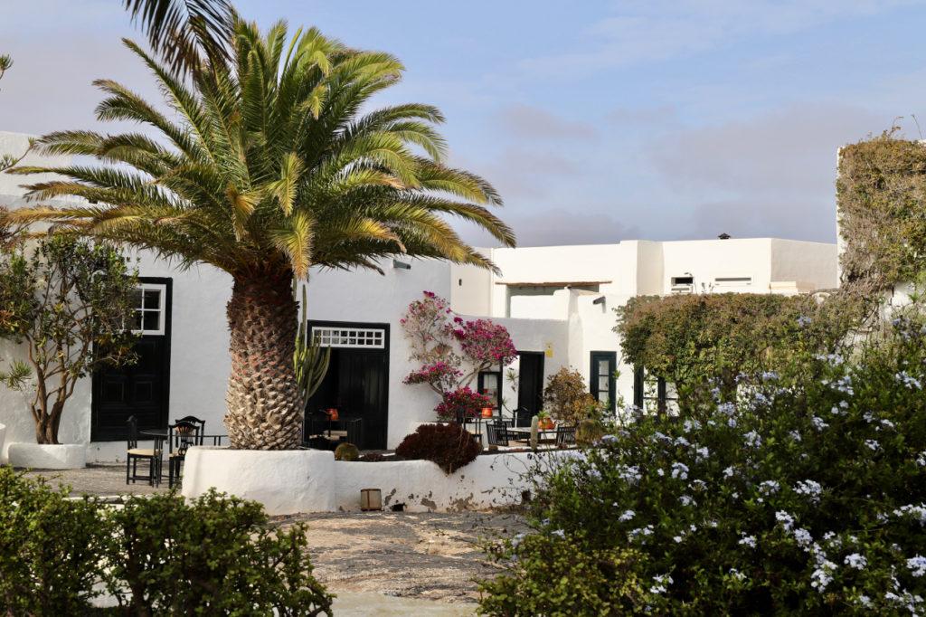 Caserio de Mozaga: Ansicht af weißes Haus mit Palme und Blumen vor der Tür