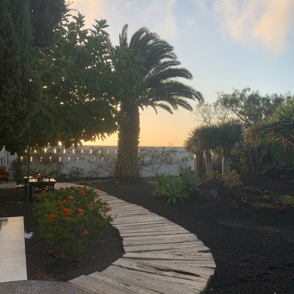 Caserio de Mozaga: Blick in den Garten mit Palme bei aufgehender Sonne