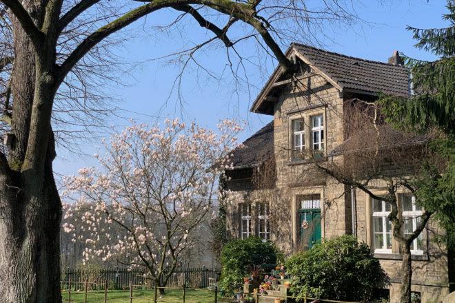 Gut Schede: Wohnhaus mit blühender Magnolie